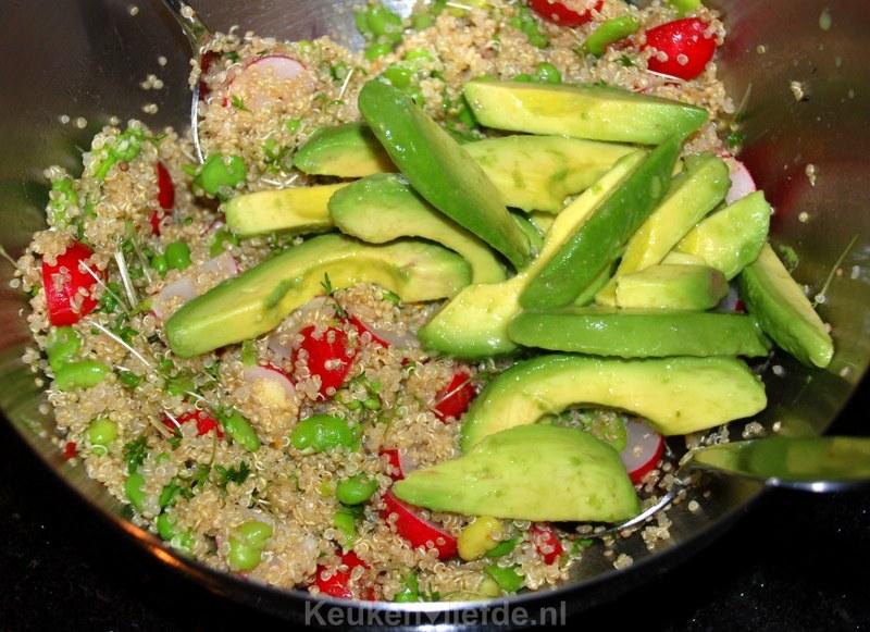 Quinoa-salade met tuinbonen, radijs en avocado