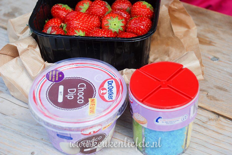 hup holland hup aardbeien-9517