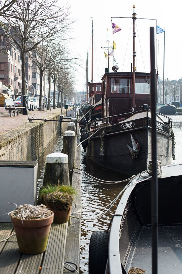 Friesland foto's Simone-7886