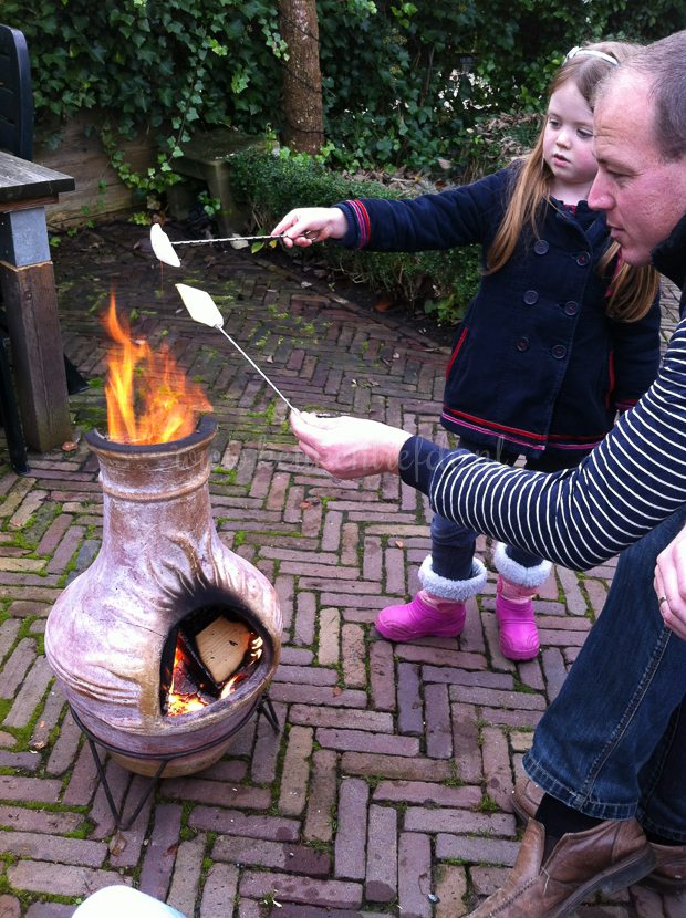 Marshmallows roosteren