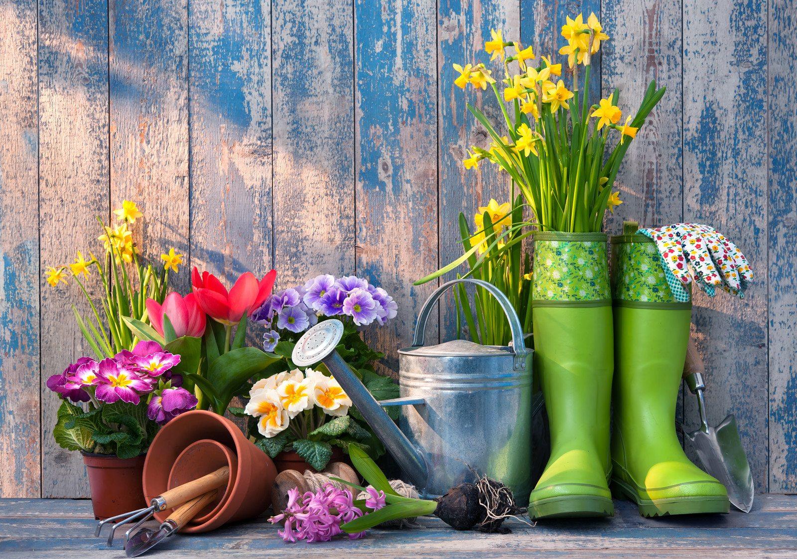 Nu op Huis- en Tuinliefde: Tips om je tuin zomerklaar te maken!