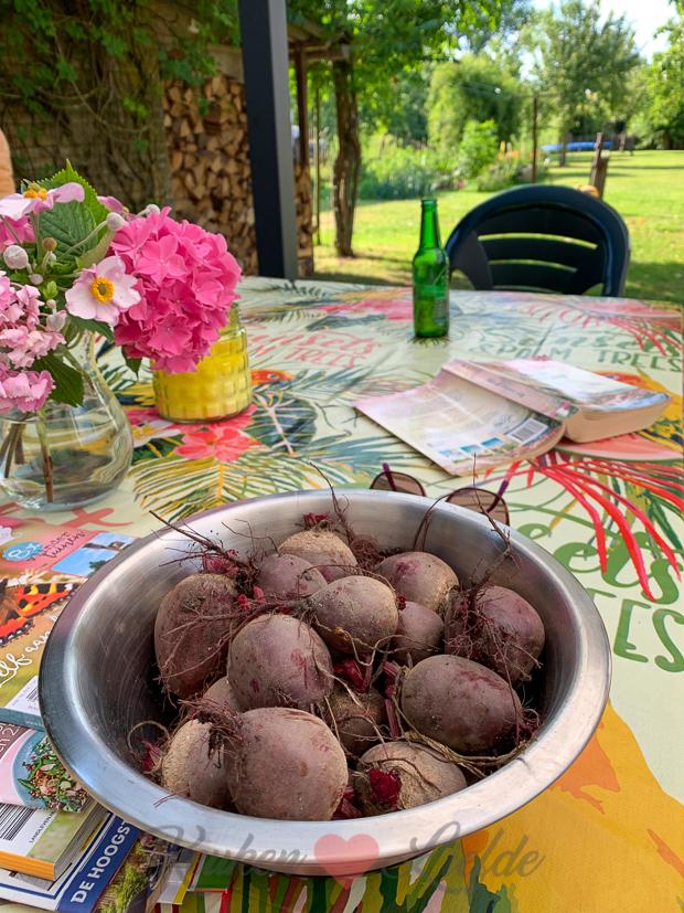 Een kijkje in de keuken week 27-2019